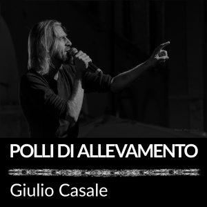 2016_09_19_Polli_di_allevamento